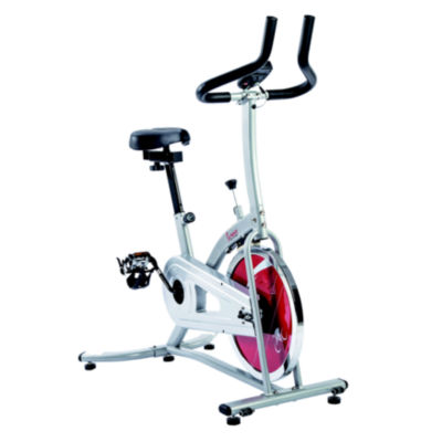 Sunny Health & Fitness SF-B1203 Chain Drive Indoor Cycling Trainer Exercise Bike