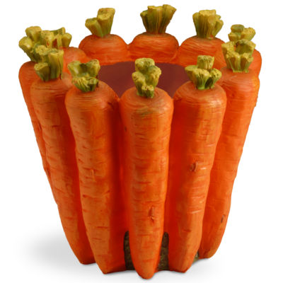 "8"" Carrot Flower Pot"""
