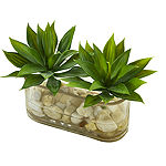 6.5 Mini Agave Succulent Artificial Arrangement in Glass Vase