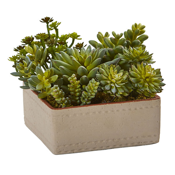 7 Mixed Succulent Artificial Plant with DecorativePlanter