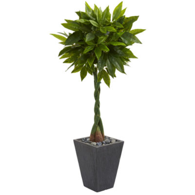 5' Money Artificial Tree in Slate Planter (RealTouch)