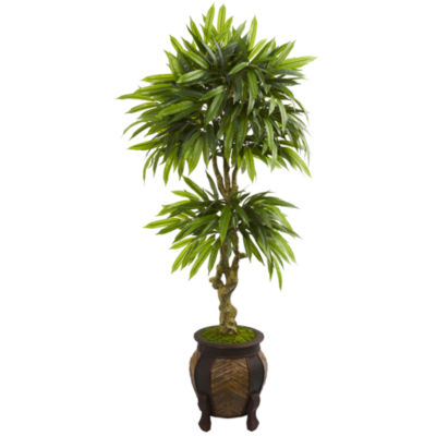 5.5' Mango Artificial Tree in Decorative Planter