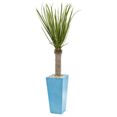 4' Yucca Artificial Tree in Turquoise Planter