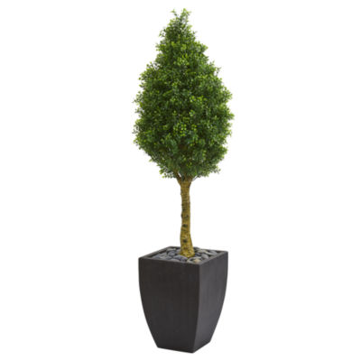5' Boxwood Cone Artificial Tree in Black Wash Planter UV Resistant (Indoor/Outdoor)