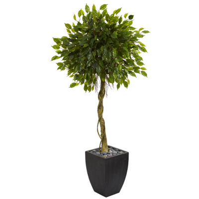 5.5' Ficus Artificial Tree in Black Wash PlanterUV Resistant (Indoor/Outdoor)