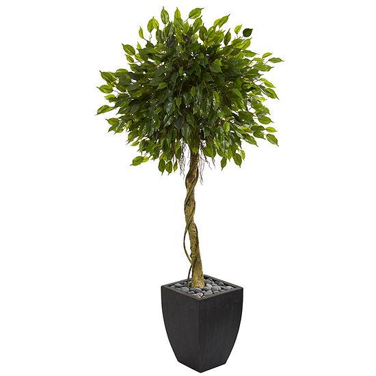 5.5' Ficus Artificial Tree in Black Wash Planter UV Resistant (Indoor/Outdoor)