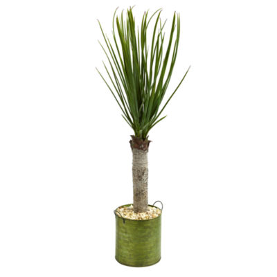 3' Yucca Artificial Tree in Green Tin Planter