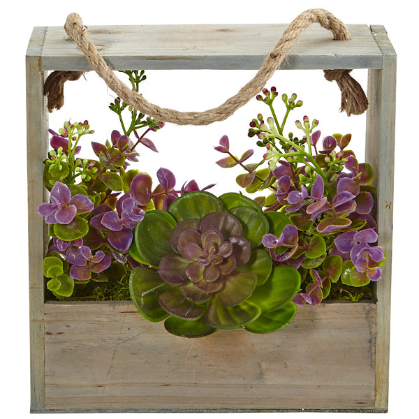 Echeveria Succulent and Eucalyptus Artificial Plant in Hanging Frame