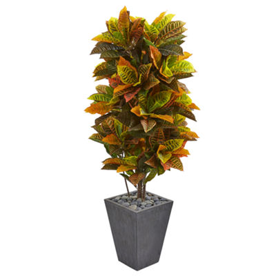 5.5' Croton Artificial Plant in Slate Planter (Real Touch)