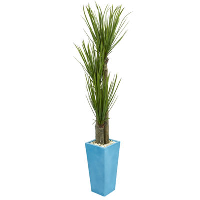6' Triple Stalk Yucca Artificial Plant in Turquoise Planter