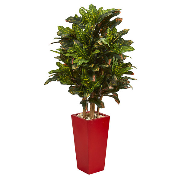 4' Croton Artificial Plant in Red Planter