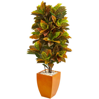 5.5' Croton Artificial Plant in Orange Planter (Real Touch)