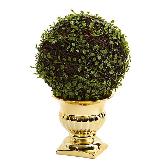 Mohlenbechia Ball Topiary in Gold Urn