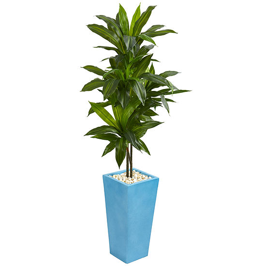5' Dracaena Artificial Plant in Turquoise TowerVase
