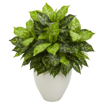 Dieffenbachia Artificial Plant in White Planter