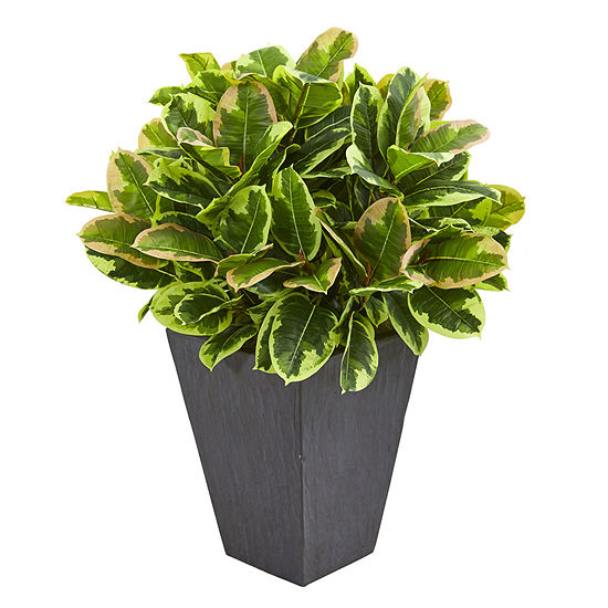 Variegated Rubber Artificial Plant in Slate Planter (Real Touch)