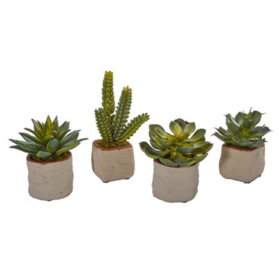 Mixed Succulent Artificial Plant (Set of 4)
