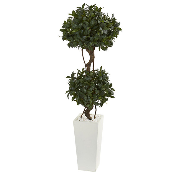 5' Sweet Bay Artificial Double Topiary in WhiteTower Planter