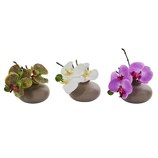 "7"" Phalaenopsis Orchid Artificial Arrangement; Set of 3"