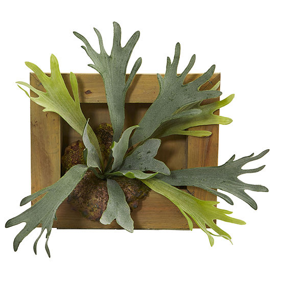 """13"""" Staghorn Artificial Plant in Wood Hanging Frame"""