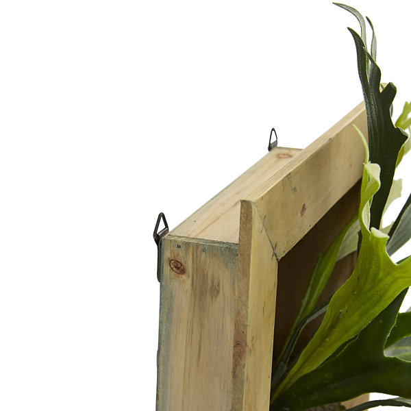 "13"" Staghorn Artificial Plant in Wood Hanging Frame"