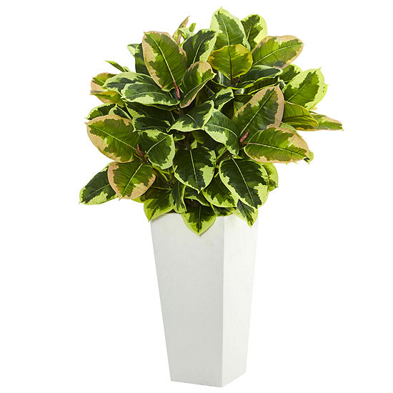 Variegated Rubber Artificial Plant in White TowerPlanter  (Real Touch)