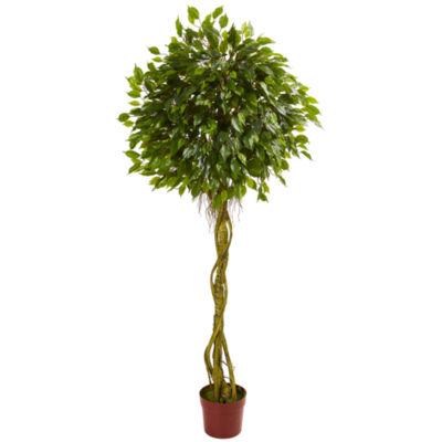 6' Ficus Artificial Topiary Tree; UV Resistant (Indoor/Outdoor)
