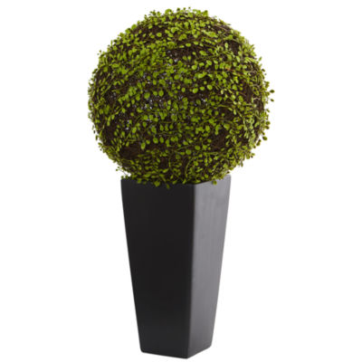 Mohlenbechia Ball Artificial Plant in Black TowerVase