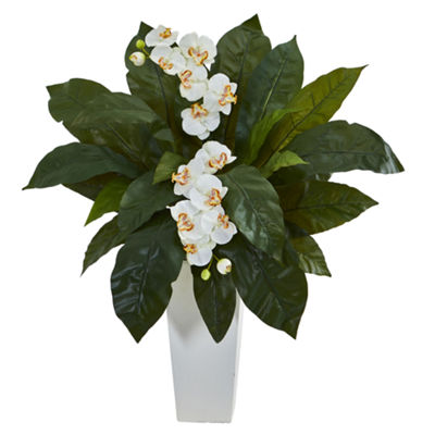Orchid and Birdsnest Fern Artificial Arrangement in White Planter
