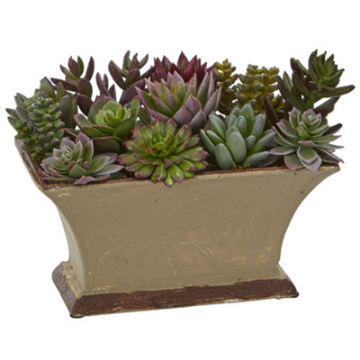 "6.5"" Mixed Succulent Artificial Plant in Vase"""