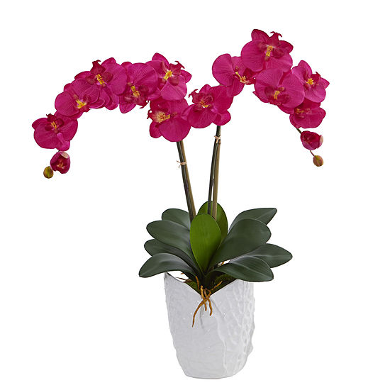 Double Phalaenopsis Orchid Artificial Arrangementin White Ceramic Vase