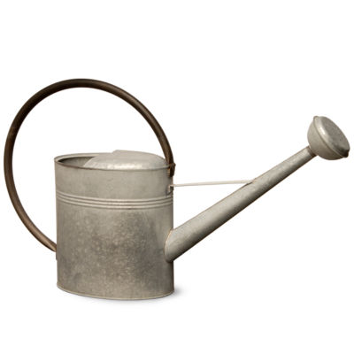 National Tree Co. Watering Can