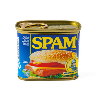 Big Mouth Inc.® Secert Safe Spam Can
