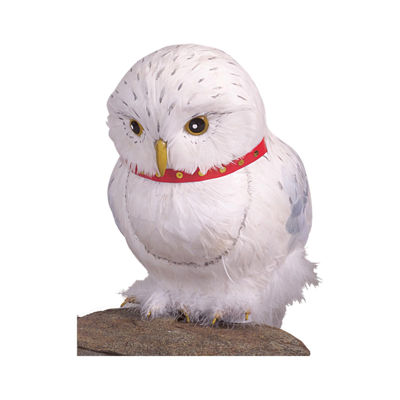 Harry Potter Owl (Hedwig Prop)