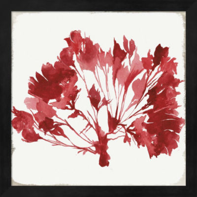 Metaverse Art Red Coral IV Framed Wall Art