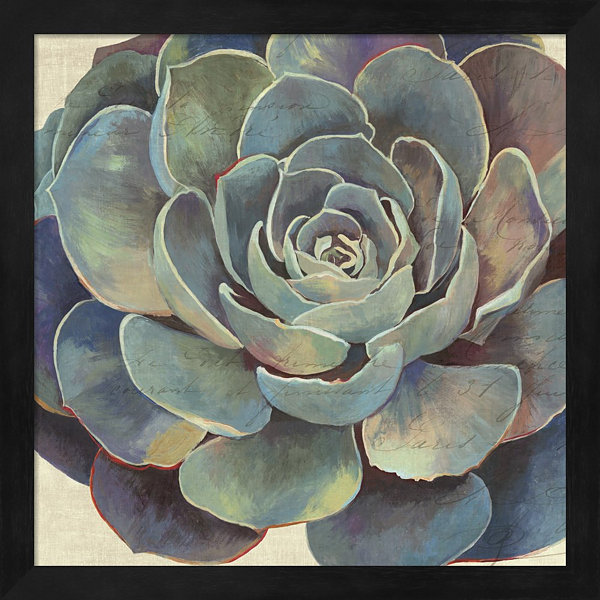 Metaverse Art Succulence I Framed Wall Art