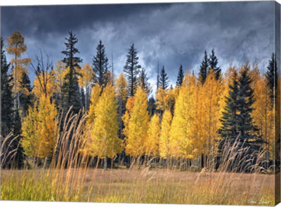 Metaverse Art Through the Yellow Trees I Canvas Wall Art