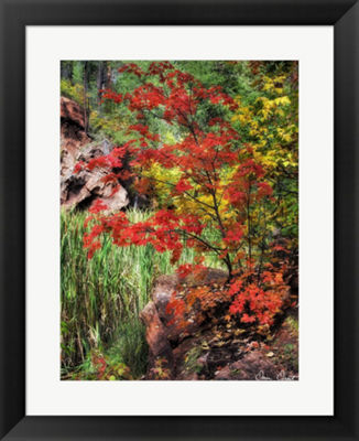 Metaverse Art Peaceful Woods I Framed Wall Art