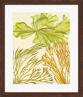 Metaverse Art Vintage Seaweed Collection I FramedWall Art