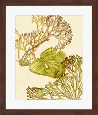 Metaverse Art Vintage Seaweed Collection II FramedWall Art