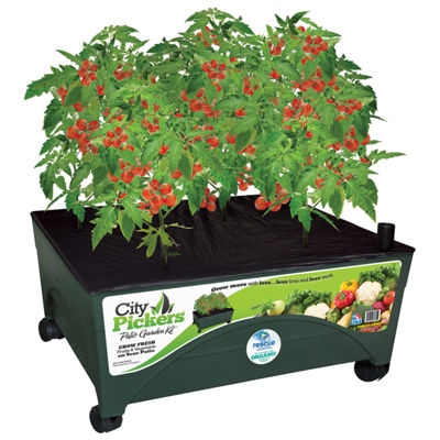 Emsco Group 2340 3' X 3' City Pickers Indoor PatioGrow Box Garden