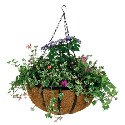 "Gardman R946 14"" Forge Hanging Basket"""