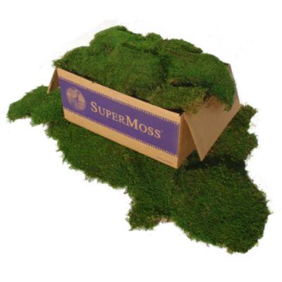 Super Moss 21508 5 Lb Green Sheet Moss