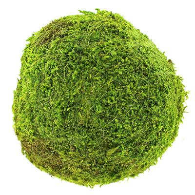 """Super Moss 21657 6"""" Green Moss Ball"""""""