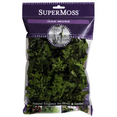 Super Moss 23704 2 Oz Preserved Fresh Green ColorOak Moss