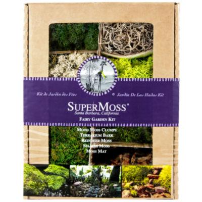 Super Moss 50310 4 Oz Mixed Mosses Fairy Garden Kit