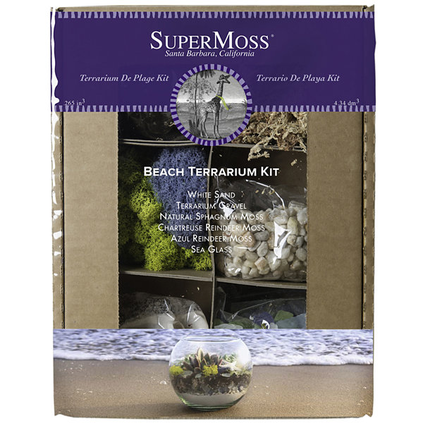 Super Moss Beach Terrarium Kit