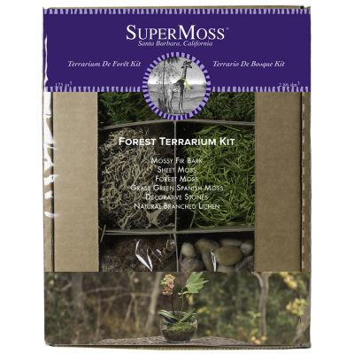 Super Moss Forest Terrarium Kit