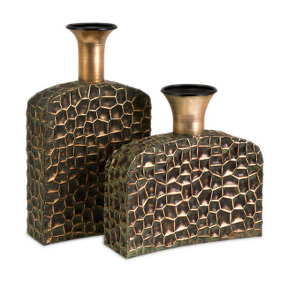 IMAX Worldwide Home Liana Reptilian Angular Bottles - Set of 2