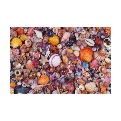 Piatnik Seashells Jigsaw Puzzle: 1000 Pcs